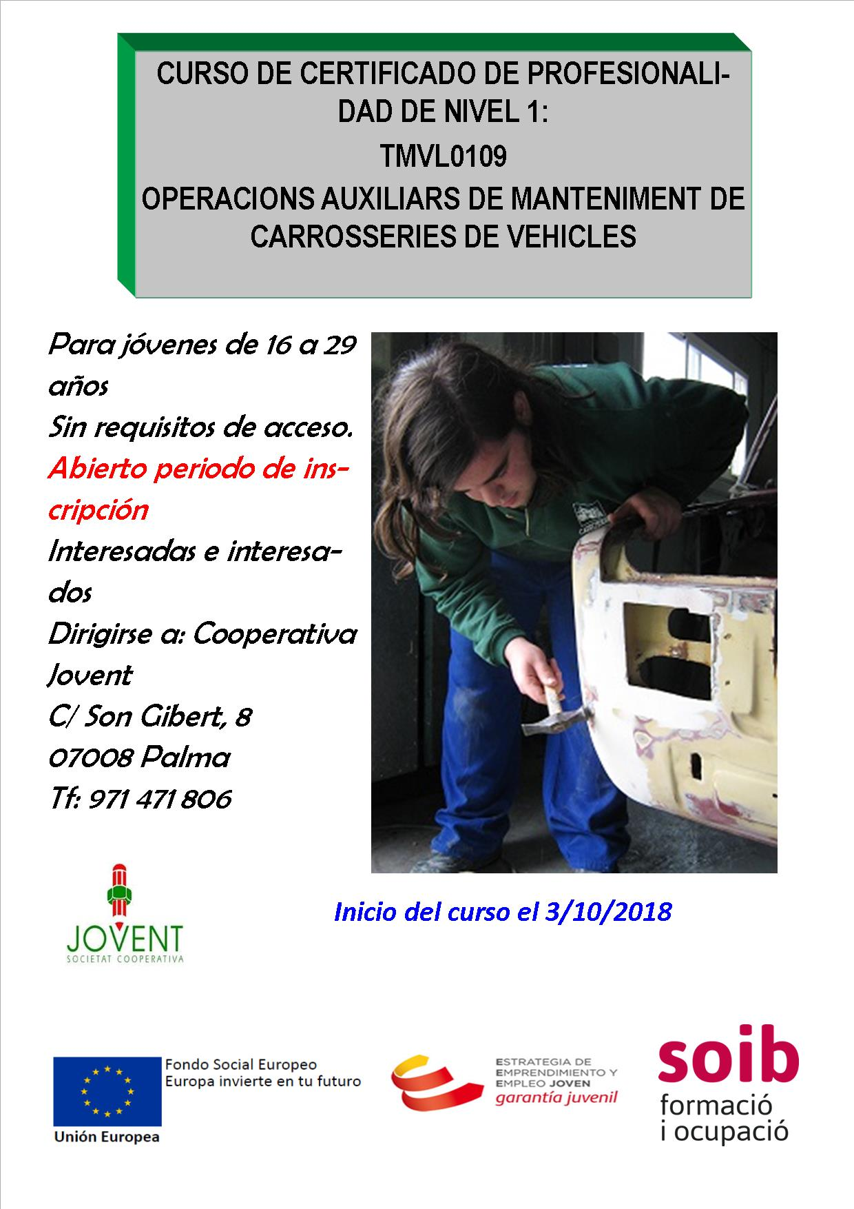 Operacions auxiliars de manteniment de carrosseries de vehicles